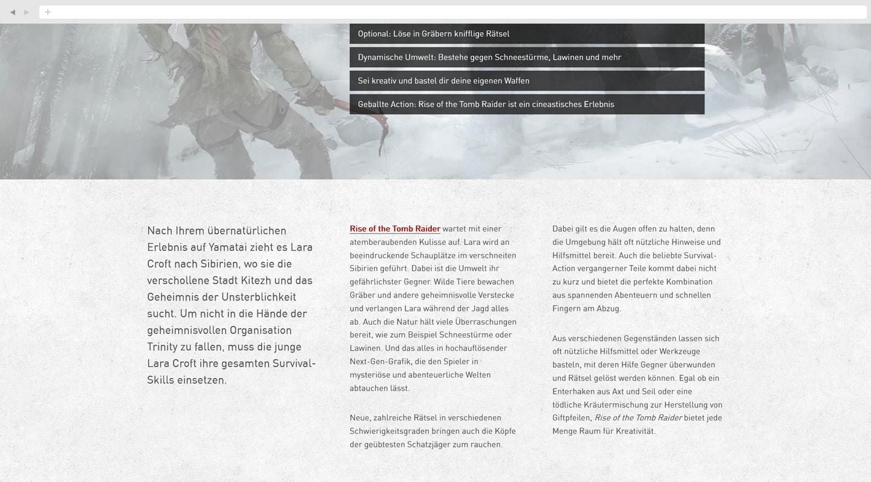 wsk-referenz-videogame-desktop06